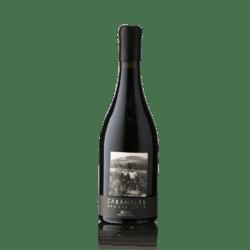 Vinos Valtuille, Cabanelas, Mencia