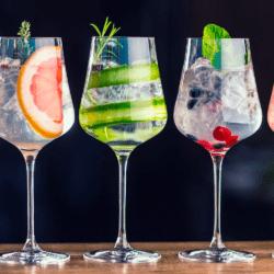 Gin Smagning Silkeborg, 17 Juni kl 18