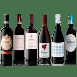 Smagekasse med 6 fl. Italienske vin
