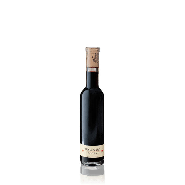 Cold Hand Winery Prunus Nigra 0,2