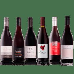 Smagekasse med 6 fl. Pinot Noir vine