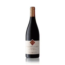 Rion, Nuits St Georges 1. Cru Terres Blanches