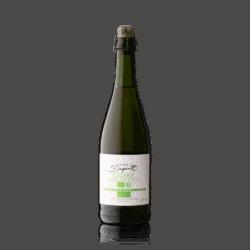 Domaine Louis Dupont Cidre Bio 2018